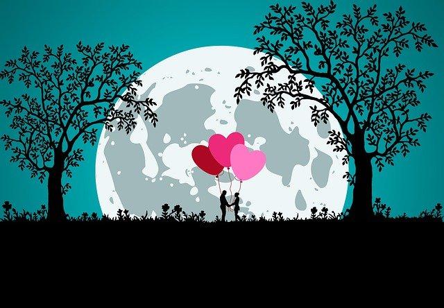 Couple Silhouette Balloons Moon  - Syaibatulhamdi / Pixabay