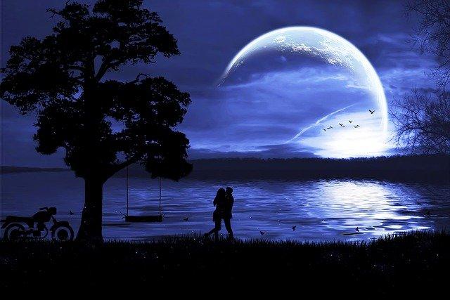 Couple Silhouette Moonlight Park  - DesignND / Pixabay
