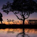 Couple Sunset Silhouettes Tree  - Tumisu / Pixabay