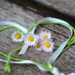 Daisy Heart Romance Valentine S Day  - congerdesign / Pixabay
