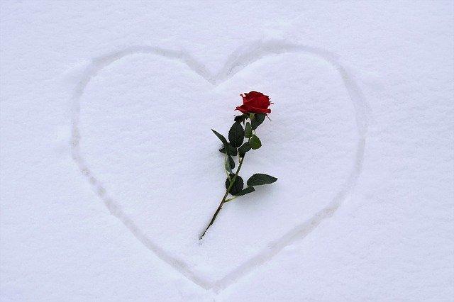 Heart In Snow Red Rose Love Symbol  - GoranH / Pixabay
