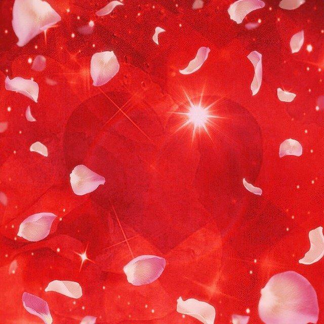 Heart Rose Petals Romantic  - lumpi / Pixabay