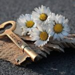 Key Heart Daisy Love Wood  - pixel2013 / Pixabay