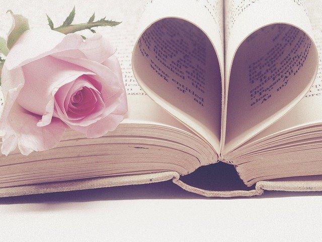 Literature Book Bindings Page Book  - JessBaileyDesign / Pixabay