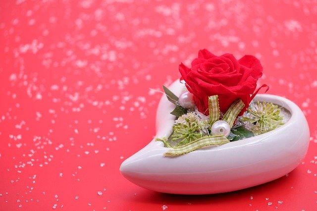 Rose Blossom Bloom Flower Heart  - Bru-nO / Pixabay