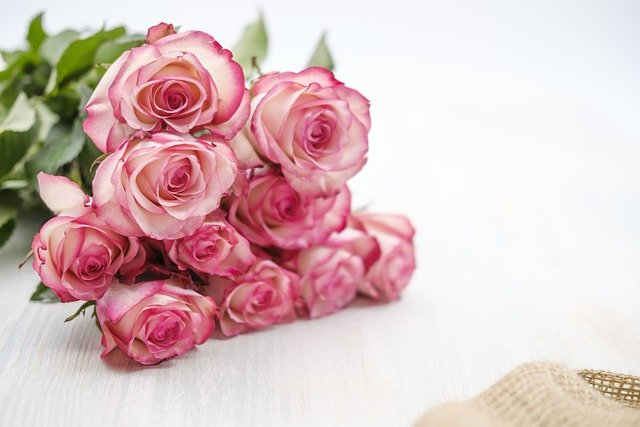 Roses Flowers Bouquet Bloom  - Bru-nO / Pixabay