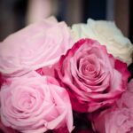 Roses Pink Romantic Wedding  - 9883074 / Pixabay