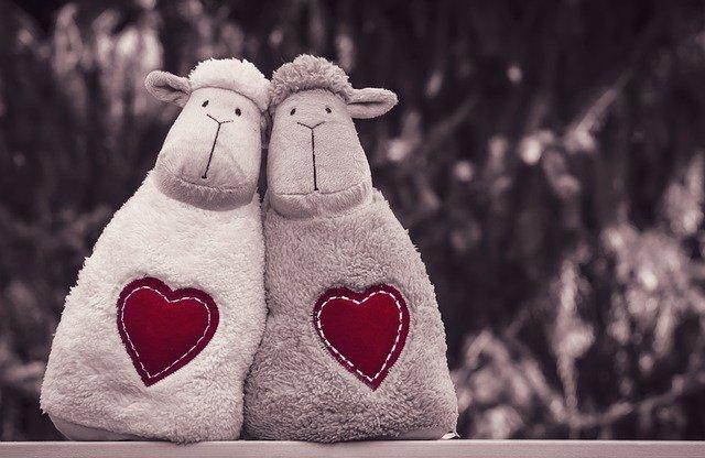 Sheep Stuffed Toys Toys  - Alexas_Fotos / Pixabay