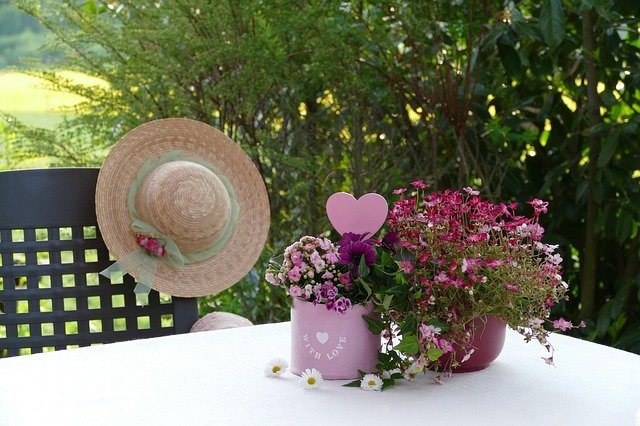 Still Life Flower Arrangement  - Katzenfee50 / Pixabay